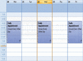 Screenshot of Codejock Calendar - ActiveX COM - 2011 Vol 2