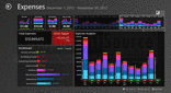 Captura de pantalla ComponentArt Data Visualization for WinRT