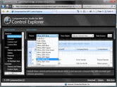 Bildschirmabzug von ComponentOne Studio for WPF - Subscription - 2013 v1
