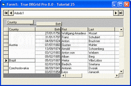 Screenshot of True DBGrid Pro - ActiveX - 8.0 (2014 v1)