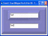 Screenshot of True DBInput Pro - ActiveX - 2009 v1