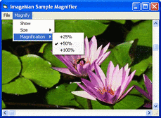 Screenshot of ImageMan - ActiveX (.NET Ready) - V8.72