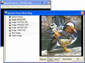 Screenshot of ImageMan - ActiveX  - V8.72
