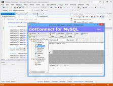 Screenshot ofdotConnect for MySQL - .NET - V8.3.171