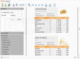 Schermata di DevExpress Silverlight - for Visual Studio .NET - 13.1