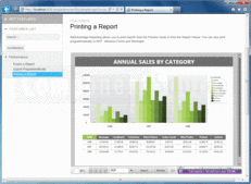 Screenshot of NetAdvantage Reporting - .NET - 2012 Volume 2
