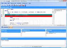 Captura de pantalla PL/SQL Debugger - Application - 10
