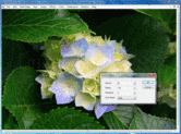 Screenshot of LEADTOOLS Imaging Pro SDK - API, C++ Class Libraries, .NET, WPF/XAML, COM - v19