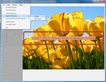 Captura de pantalla LEADTOOLS Virtual Printer SDK Module - Add-In - 17.5