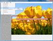Screenshot ofLEADTOOLS Virtual Printer Module