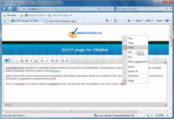 Schermata di WebSpellChecker.net - Add-In - V3.8