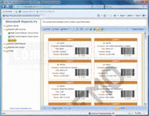 Screenshot of Stimulsoft Reports.Fx for Flex - Flex - 2014.2