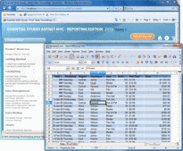 Screenshot of Syncfusion Essential XlsIO - ASP.NET MVC - 2012