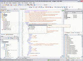 Screenshot of oXygen XML Author - Professional - V15.2
