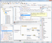 Screenshot of oXygen XML Developer - Professional - V15