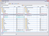 Screenshot of oXygen XML Editor - Professional - V15