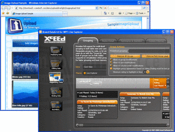 Xceed's Upload for Silverlight and DataGrid for WPF components.