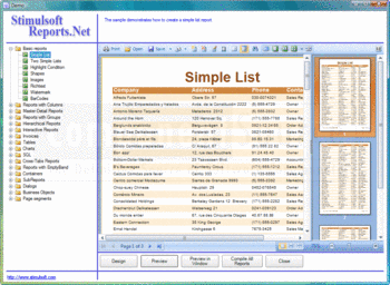 View a report using Stimulsoft Reports.