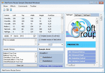 .Net Forms Resize sample window displaying various UI elements.