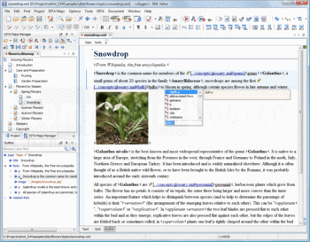 XML file shown in Text View with oXygen XML Editor.