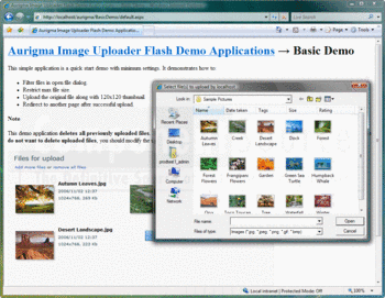Uploading JPEG images with Image Uploader Flash.