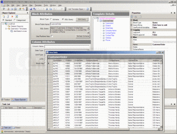 Viewing customer order data with Enterprise Enabler for WSS.