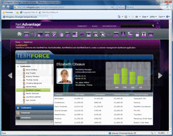 Silverlight dashboard created with Infragistics NetAdvantage for .NET.