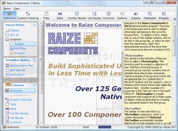 Sample of user interface VCL components in Raize Components.
