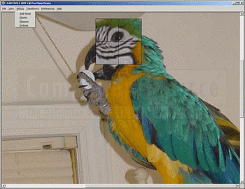 Zooming an image using LEADTOOLS Imaging Pro SDK.